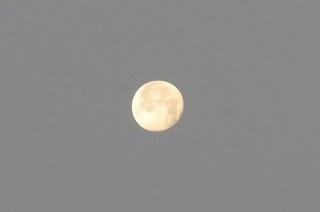 太陽・月 (2).JPG